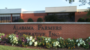 Employee Theft Investigation in Decatur Alabama